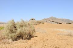 Deserto árabe da vista, Fotos de Stock Royalty Free