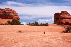 Deserto Foto de Stock