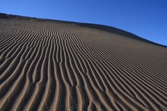 Deserto Foto de Stock Royalty Free