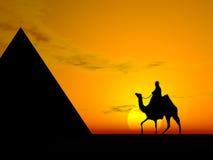 Deserto   Fotografia de Stock Royalty Free