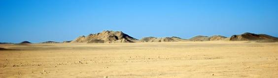 Deserto immagini stock