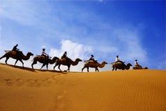 Deserto immagine stock libera da diritti