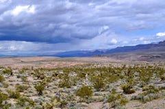 Deserto alto e baixas nuvens imagem de stock royalty free
