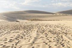 Deserto amarelo da areia em Mui Ne, Vietname imagens de stock royalty free