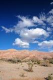 Deserto americano Fotografia Stock