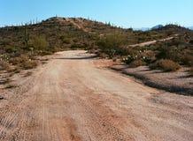 Deserto Arizona della sonora della strada del deserto Fotografia Stock