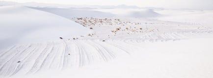 Deserto bianco delle sabbie panoramico Fotografia Stock Libera da Diritti