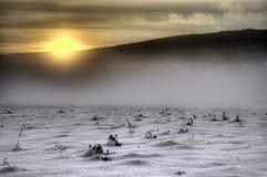 Deserto branco Foto de Stock Royalty Free
