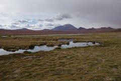 Deserto chileno imagem de stock