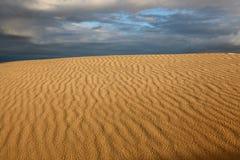 Deserto com as trilhas na areia Fotos de Stock Royalty Free