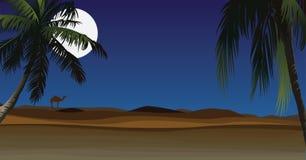 Deserto con la palma Fotografia Stock