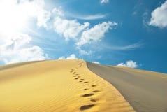 Deserto da areia Fotos de Stock