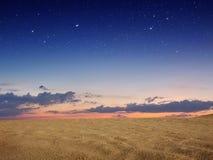 Deserto da areia Imagem de Stock Royalty Free