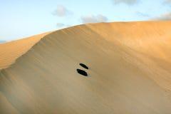 Deserto da areia Fotografia de Stock Royalty Free