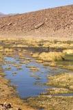Deserto de Atacama foto de stock