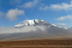 Deserto de Atacama chileno imagens de stock royalty free