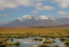 Deserto de Atacama chileno fotografia de stock