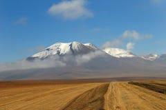 Deserto de Atacama chileno Imagens de Stock