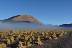Deserto de Atacama - geyser fotografia de stock