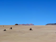 Deserto de Chololi, beira de Bolívia e de Chile Imagem de Stock