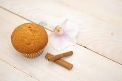 Deserto de Coupcake Imagens de Stock