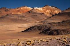 Deserto de Dali bolívia Fotos de Stock Royalty Free