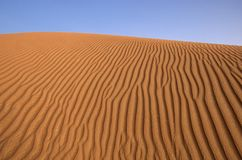 Deserto de Dubai foto de stock royalty free