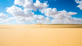 Deserto de Egito Imagens de Stock Royalty Free