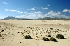 Deserto de Fuerteventura na área Corallejo, Espanha Imagens de Stock Royalty Free
