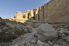 Deserto de Judea. imagens de stock royalty free