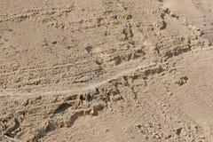 Deserto de Judea, Israel Foto de Stock