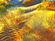 Deserto de Judean imagens de stock royalty free