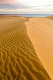 Deserto de Maspalomas Imagens de Stock
