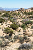 Deserto de Mojave Foto de Stock Royalty Free
