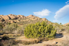 Deserto de Mojave Santa Clarita California Fotografia de Stock