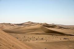 Deserto de Namíbia fotografia de stock royalty free