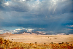 Deserto de Namíbia, África Fotos de Stock Royalty Free