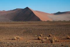 Deserto de Namib Imagens de Stock Royalty Free