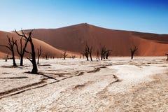 Deserto de Namib Foto de Stock Royalty Free
