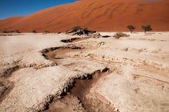 Deserto de Namib Fotos de Stock Royalty Free
