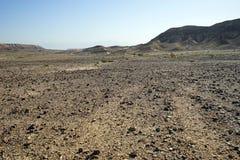 Deserto de pedra Imagens de Stock