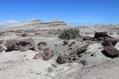 Deserto de pedra cinzento Fotos de Stock