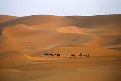 Deserto de Sahara Fotos de Stock