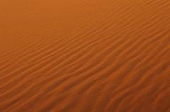 Deserto de Sahara Imagens de Stock