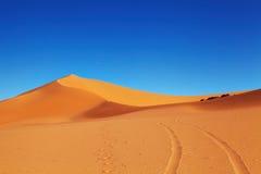 Deserto de Sahara, Argélia Foto de Stock Royalty Free