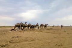 Deserto 02 de sal de Kashan Maranjab foto de stock