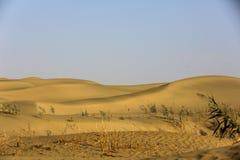 Deserto de Taklimakan imagens de stock