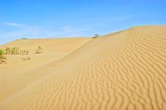 Deserto de Taklimakan Imagem de Stock