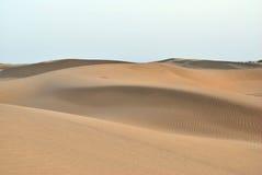 Deserto de Thar Imagens de Stock