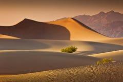 Deserto Death Valley Fotografia Stock Libera da Diritti